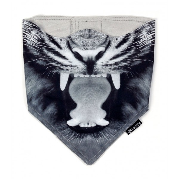 Warm Mask Meatfly